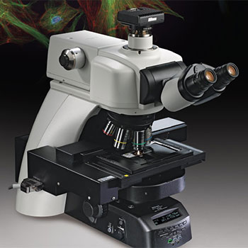 Nikon Ni-E Microscope