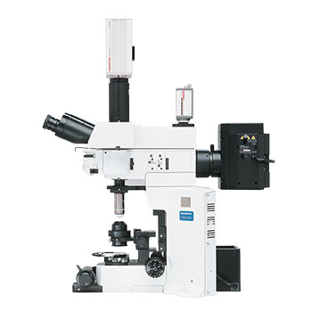 Olympus BX51W1 Microscope
