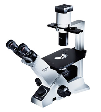 Olympus CKX31 Microscope