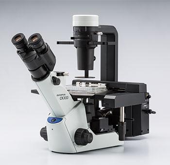 Olympus CKX53 Microscope