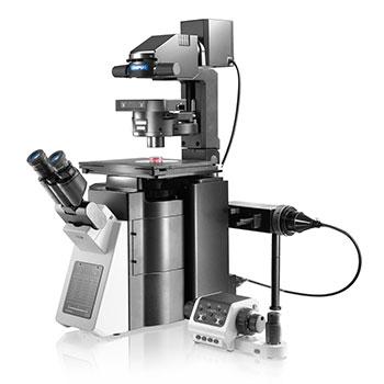 Olympus IX83 Microscope