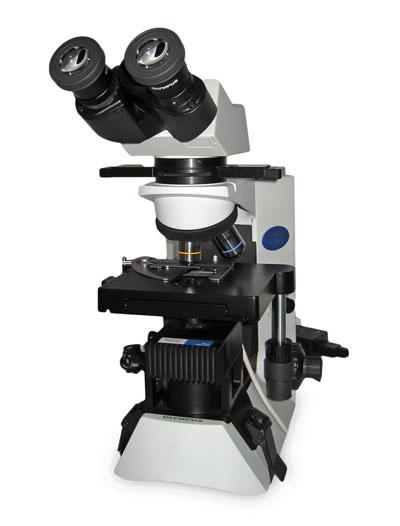 Olympus CX31 Microscope