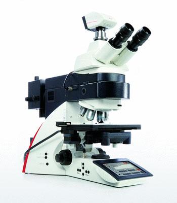 Leica DM6000 Microscope